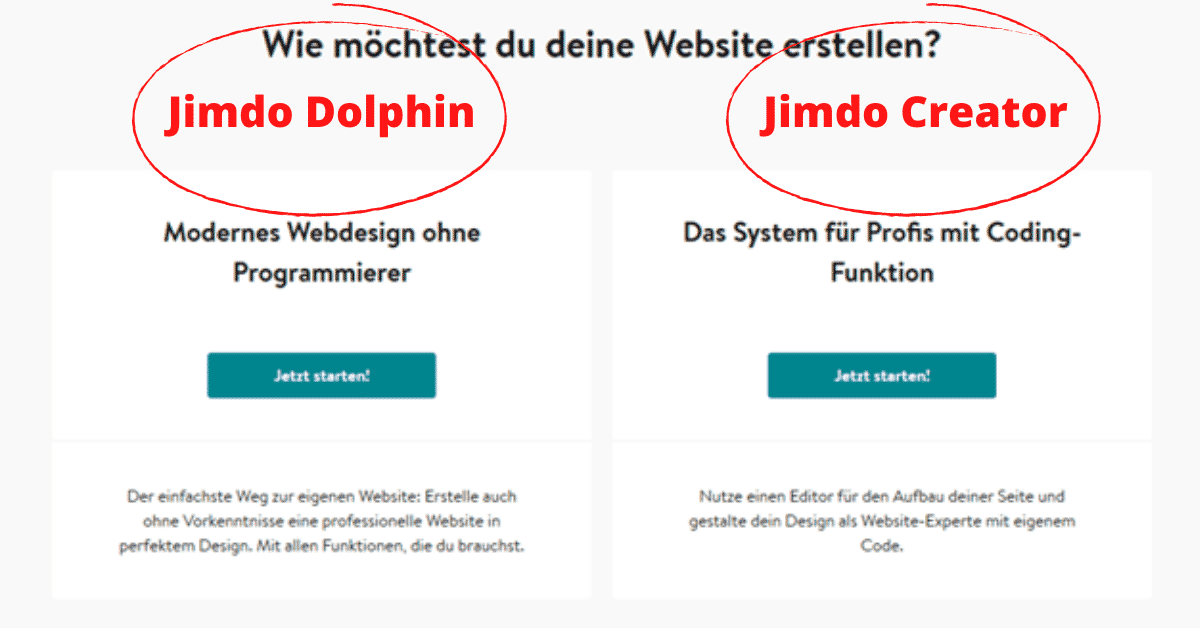 Jimdo Website Dolphin oder Creator