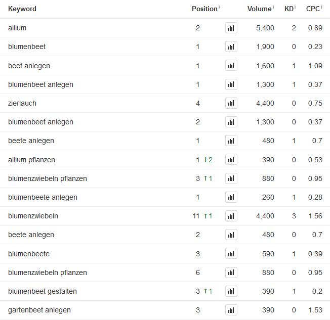 Auszug aus den Google Ranking des Onlineshops