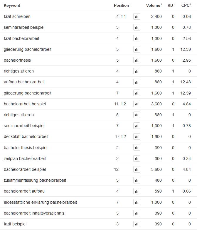 Auszug aus den Google Rankings des Website 1
