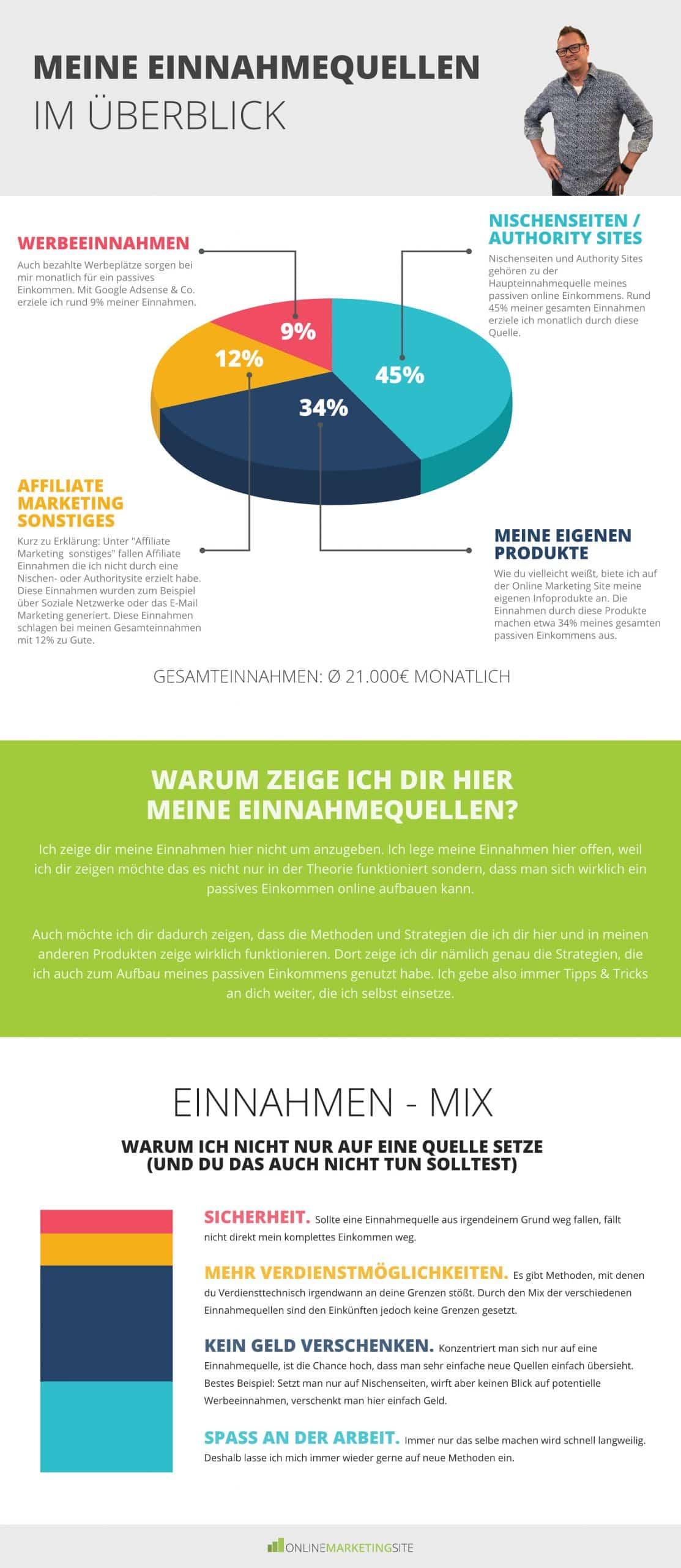 Infografik meine Online Einnahmen